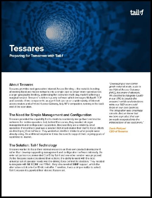 Tessares Case Study Image.jpg