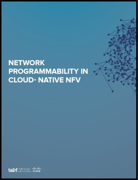 Network Programmabilit in CloudNative NFV image