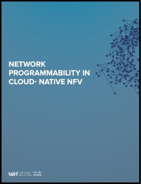 Network Programmabilit in CloudNative NFV image.jpg